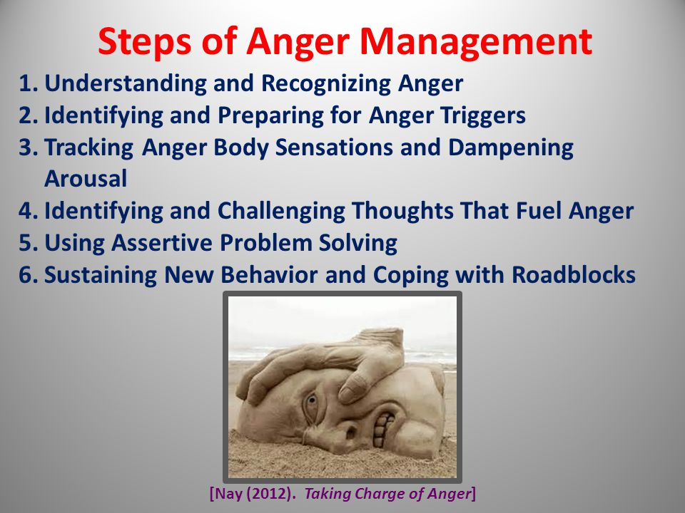 Steps of Anger Management [Nay (2012). Taking Charge of Anger]
